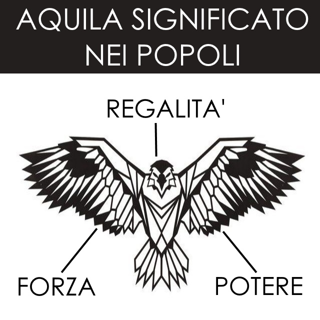 Aquila Tattoo