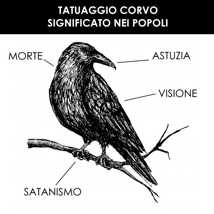 Tatuaggio corvo